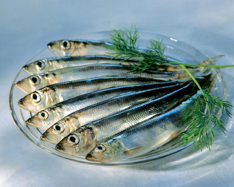 Pieniä kaloja lasilautasella tillin kera